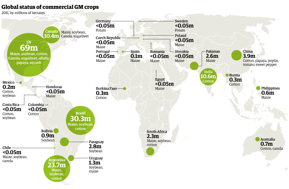 https://sites.google.com/a/gnj.cz/zemepis/js41-gmo/genetically-modified-crops-map.png
